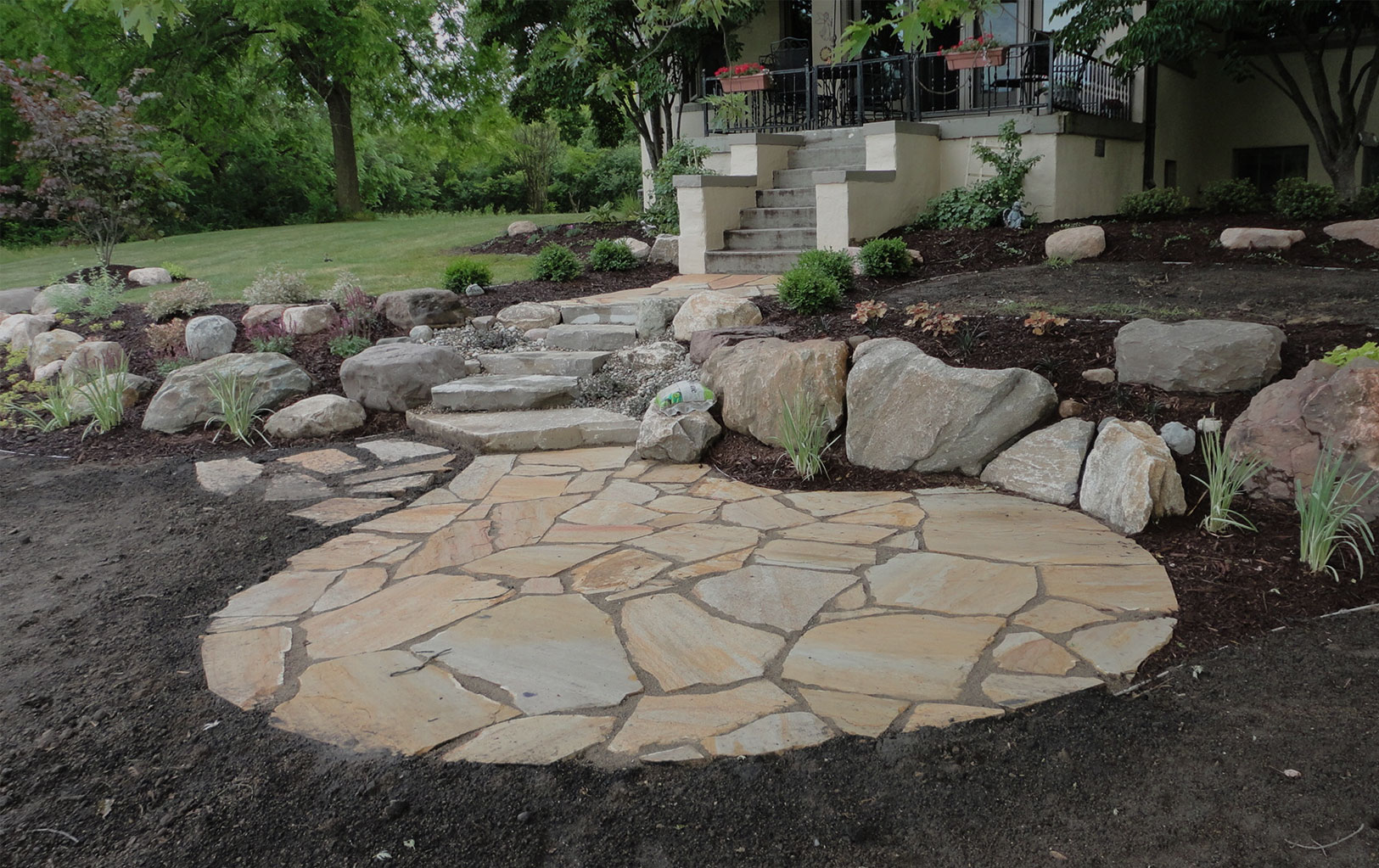Plant & Groundcover Softscapes